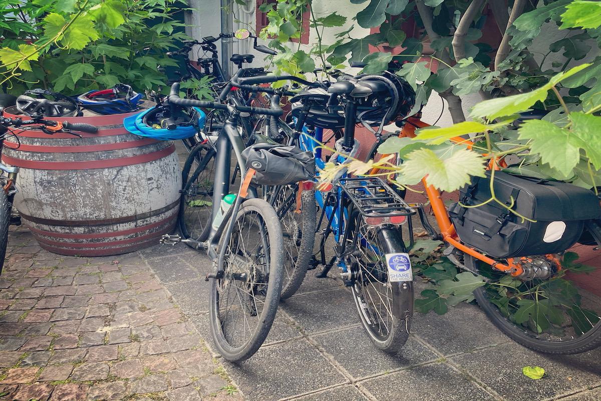 Fahrräder Südpfalz
