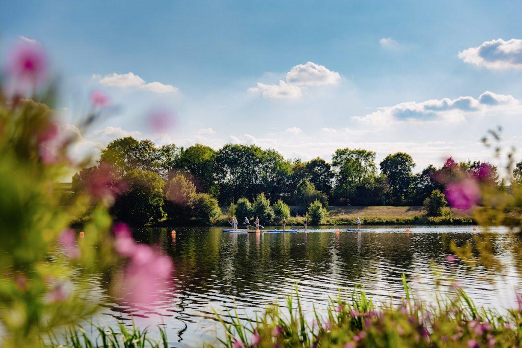 Ins Blaue SUP Paddelrevier Werdersee Blumen